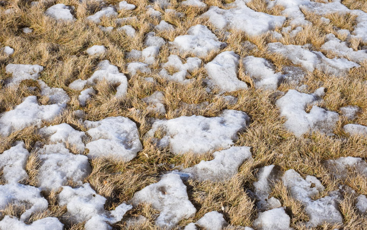 Prairie spring - retreating snow