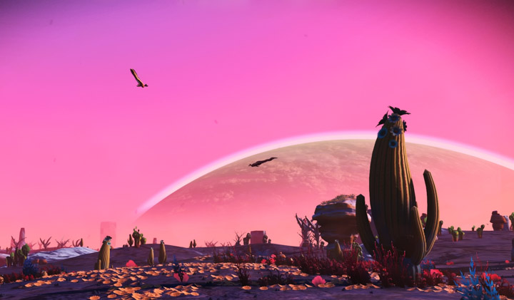 Nice view in No Man's Sky