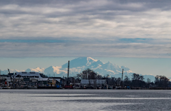 Mount Baker behind the Steveston docks
