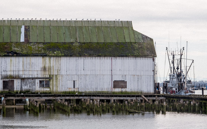 Old warehouse at Steveston