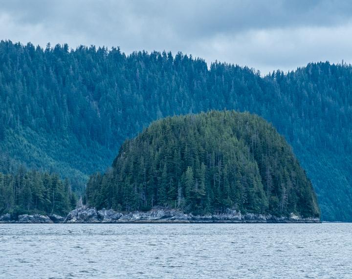 Small wooded island in Gwaii Haanas