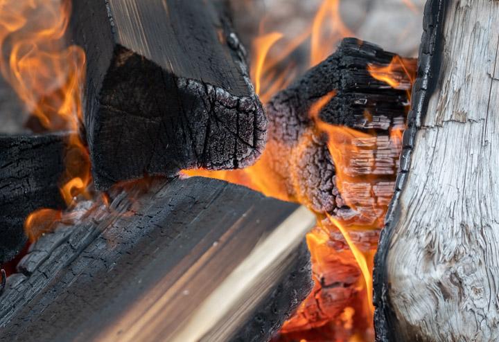 Fire detail in Gwaii Haanas