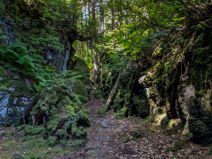 Path to the SG̱ang Gwaay village site in Gwaii Haaans