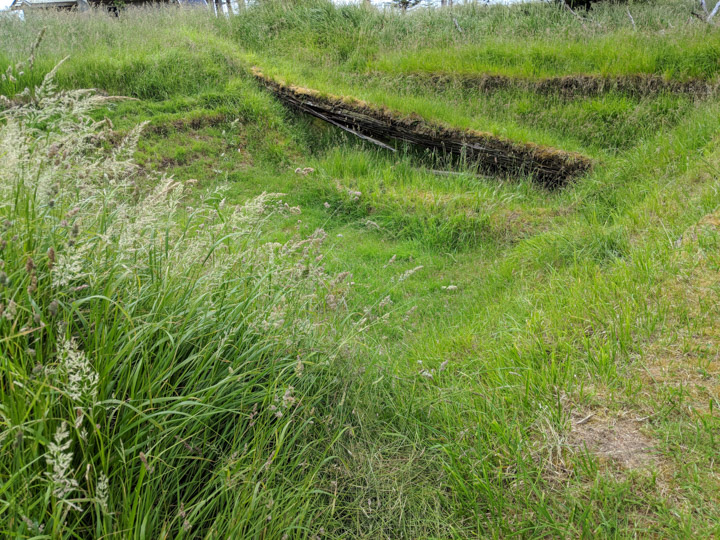 Site of large house at an old Haida Village