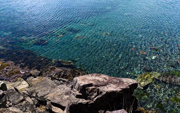 Gwaii Haanas seawater, very clear