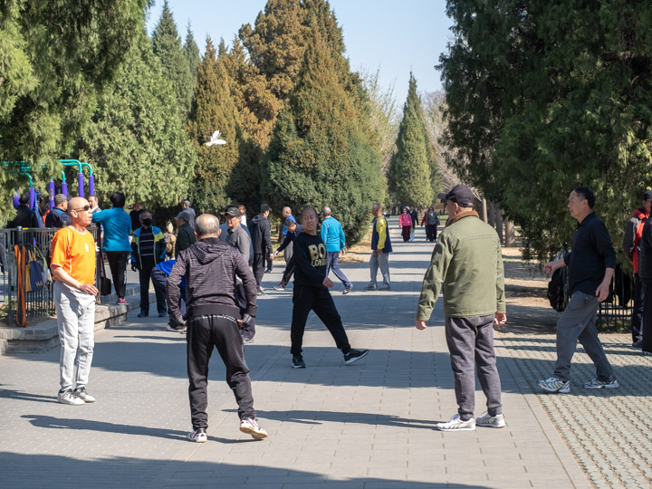 Jianzi players in the Temple of Heaven