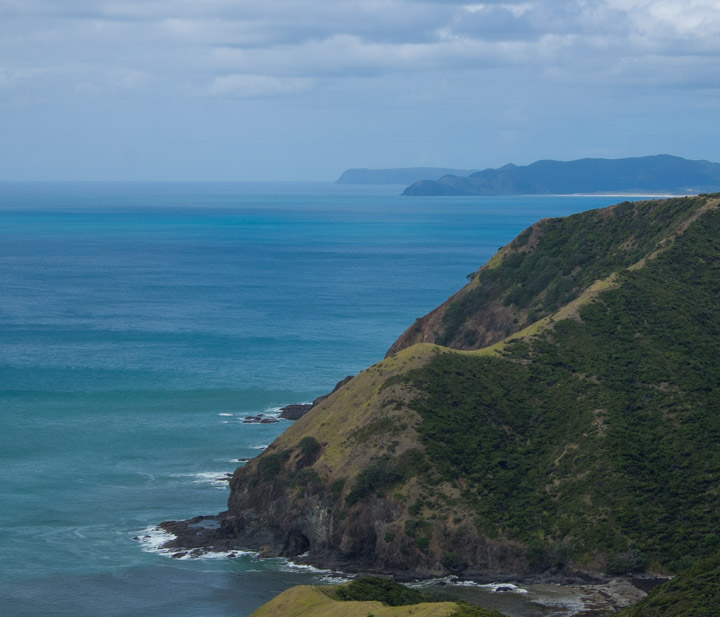 The north shore of New Zealand